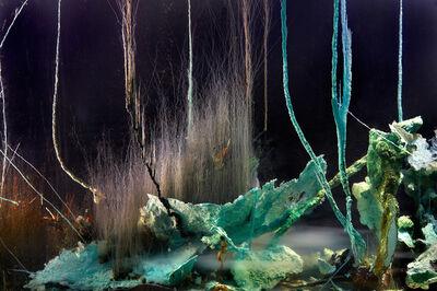 Hicham Berrada, 'Pressage 2 photographs by Laurent Lecat'