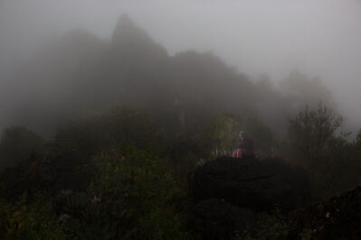 Shandor Barcs, 'Family from the Mist III', 2014
