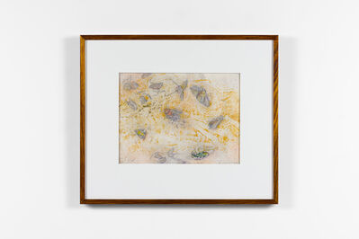 John Wolseley, 'Windblown insects on the salt – Lake Tyrrell (for JC)', 2018