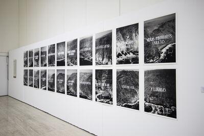 Raúl Zurita, 'Verás un mar de piedras', 2015