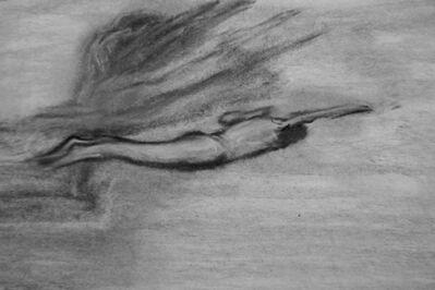 Hirotoshi Iwasaki, 'Diving', 2009
