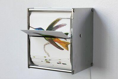 Juan Fontanive, 'Ornithology I', 2015