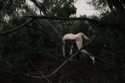 Javier Rey, 'Engulfment (Córdoba 7)', 2014