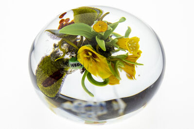 Paul Stankard, 'Paperweight, Seeds yellow Lillys w/wildflowers & Bursting seed pod', 1997