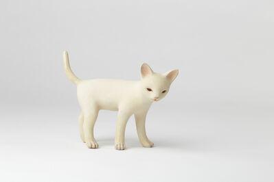 Yoshimasa Tsuchiya, 'Kitten', 2019