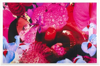 Marc Quinn, 'At the Far Edges of the Universe 8', 2010