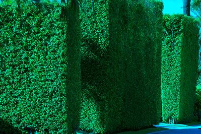 Robert Funk, 'Hedge Fun  - Street Art by the Wealthy - Sunset Island', 2020