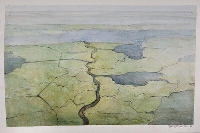 Errol Barron, 'Wetland', 2020