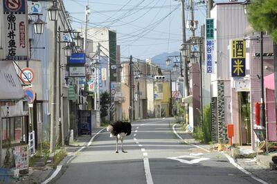 Yasusuke Ota, 'Deserted Town ', 2011