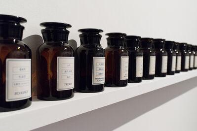 Antoni Muntadas, 'On Translation: Pille', 2006-2014
