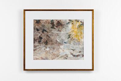 John Wolseley, 'Field painting 6 – Mallee beetles', 2019