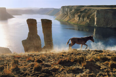 Steve McCurry, 'HORSE AND TWO TOWERS AT BAND-E-AMIR, 2002', 2002