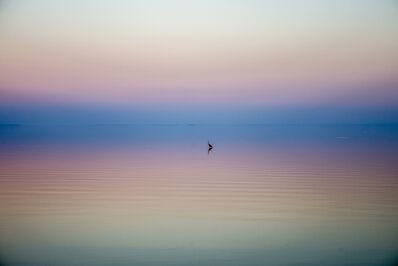 Tao Ruspoli, 'Wetlands of California', 2018