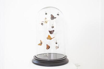 Tessa Farmer, 'Fairies catching Butterflies '