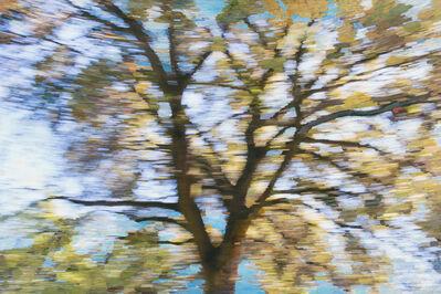 Wynne Hayakawa, 'The Sky Explodes (With Light)', 2016