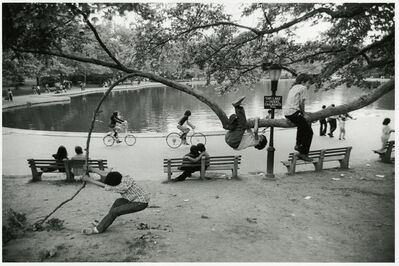 Paul McDonough, 'Central Park Pond, Kids in Tree', 1973