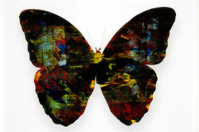Stan Gaz, 'Butterfly 4', 2010