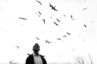 Graciela Iturbide, 'El señor de los pájaros, Nayarit, México', 1984