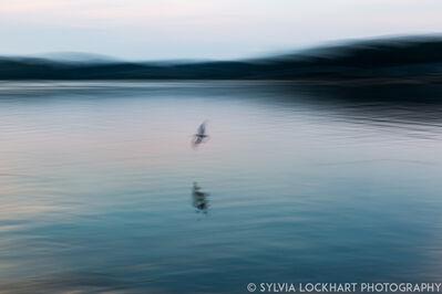 Sylvia Lockhart, 'Reflections', 2018