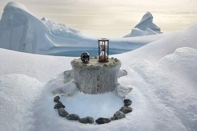 Anne De Carbuccia, 'Antarctic & Southern Elephant Seal Skulls', 2014