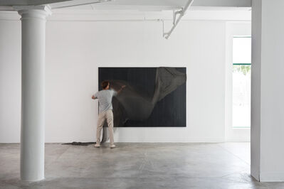 Luis Pons, 'Magnetic Wallpaper', 2013