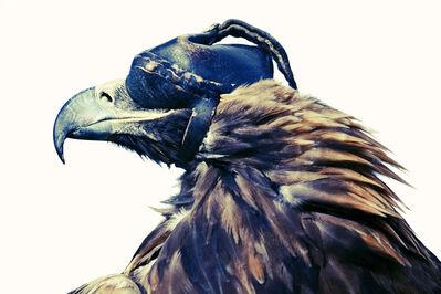 Lyle Owerko, 'Eagle Hunters 01', 2015