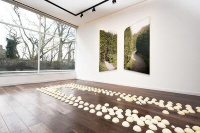 Antoine Espinasseau, 'Jardin', 2016
