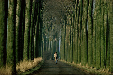 Gerd Ludwig, '#6 - Joseph Beuys walks down an alley of poplar trees in the Düffel area', 1978