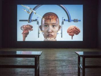 Lu Yang, 'LuYang Delusional Mandala', 2015