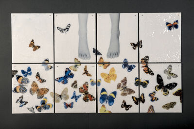 Silvia Levenson, 'How long butterfly live?', 2015