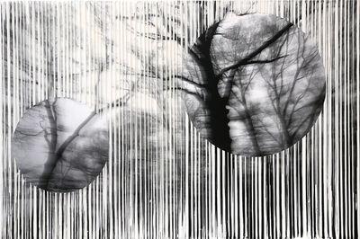 Pezhman, 'Boundless Phoria', 2018