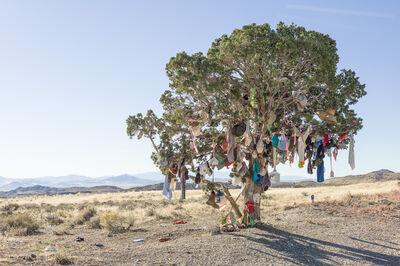 Andrew Borowiec, 'Elko County, Nevada', 2014