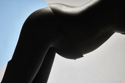 Carli Hermès, 'Curves 6', 2015