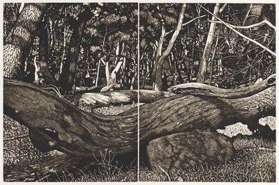 David Frazer, 'The Tangled Wood (Composition VII, framed)', 2019