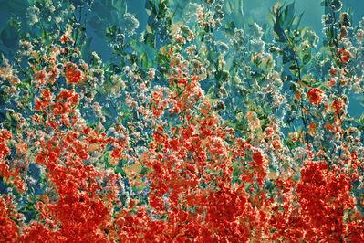 Akkadia, 'Renaissance II / Series Hanging Gardens', 2014