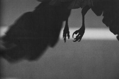Masahisa Fukase, 'Koen-dori, Shibuya, from the series The Solitude of the Ravens', 1982