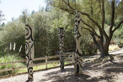 Steve Jensen, '[ 50 ] Zebra Fish', Contemporary
