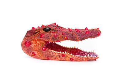 PJ Linden, 'Pomegranate Gator', 2020