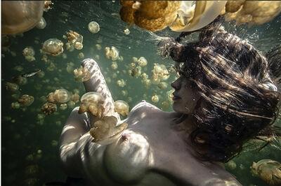 Amber Arbucci, 'Escape Into Reality', 2013