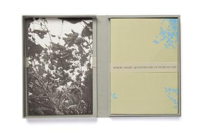 Robert Adams, 'Questions for an Overcast Day', 2007