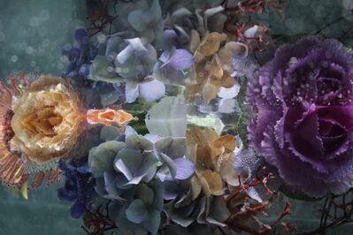 Andrea Bonfils, 'Submerged Garden 8058', ca. 2019