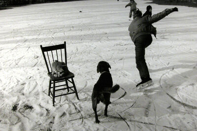 Larry Towell, 'The Skating Pond, Lambton County, Ontario, Canada', 1992