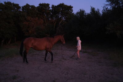 Joana Fischer, 'The wild horse', 2020