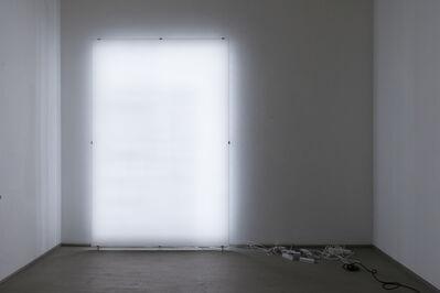 Ignas Krunglevičius, 'LCD spine', 2015