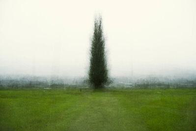 Bill Anderson (b. 1952), 'Axis Mundi', 2013