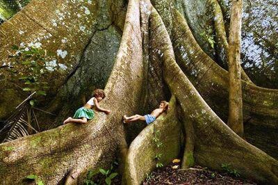 Araquém Alcântara, 'Children and the Sumauma, The Amazon, Brazil', 2010
