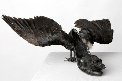 Elvira Rajek, 'Come, black bird', 2012