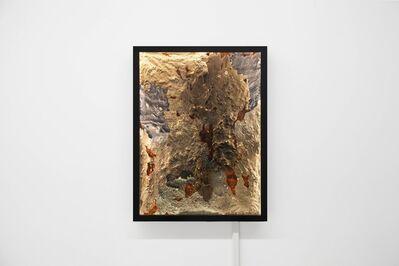 Andrew Luk 陸浩明, 'Horizon Scan No. 16', 2019