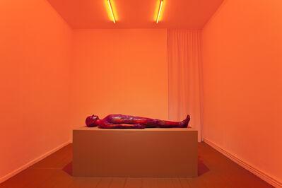 "Mariechen Danz, '""Womb Tomb (thermal active)""', 2014-2015"