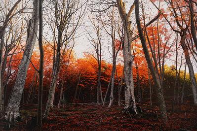 Raphaella Spence, 'Autumn Woods', 2017